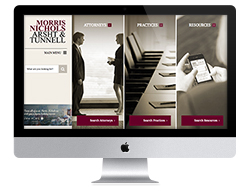 Law Firm Web Design thumbnail