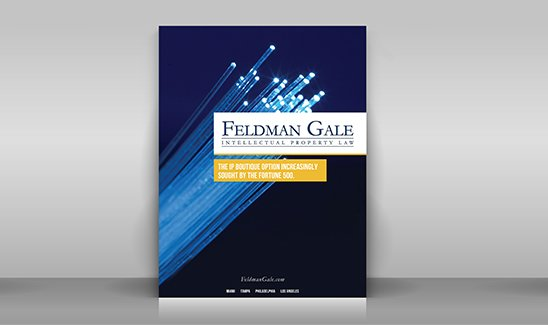 Feldman Gale brochure site thumbnail