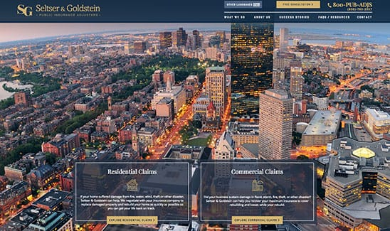 Seltser & Goldstein Public Adjusters, Inc. site thumbnail