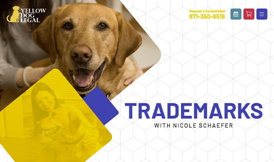 Yellow Dog Legal - nicole schaefer site thumbnail